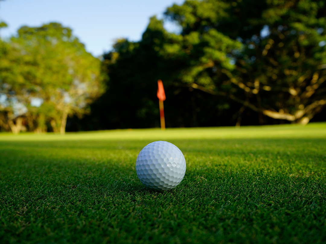 A golf ball on the green.