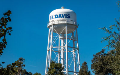 Our Collaboration with the UC Davis Division of Pain Medicine
