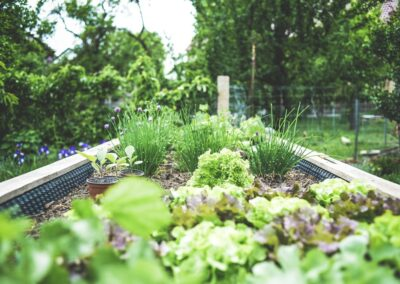 Yard Work Injuries: Common Mistakes & How To Keep Your Body Healthy